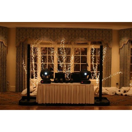 Mike's Mobile DJ Service - Dallas GA Wedding Disc Jockey Photo 15
