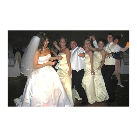Stealth DJ's Mobile Disc Jockey Service - South Lyon MI Wedding Disc Jockey Photo 13