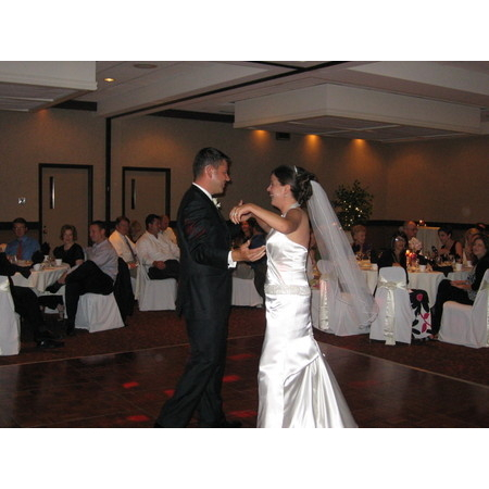Stealth DJ's Mobile Disc Jockey Service - South Lyon MI Wedding Disc Jockey Photo 18