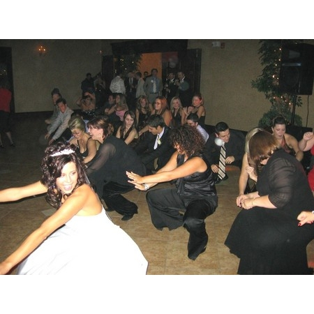 Stealth DJ's Mobile Disc Jockey Service - South Lyon MI Wedding Disc Jockey Photo 21