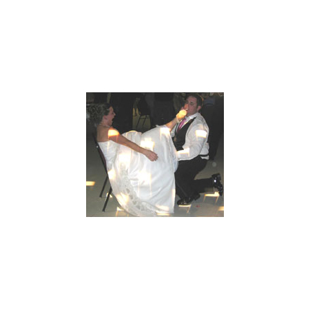 Stealth DJ's Mobile Disc Jockey Service - South Lyon MI Wedding Disc Jockey Photo 3