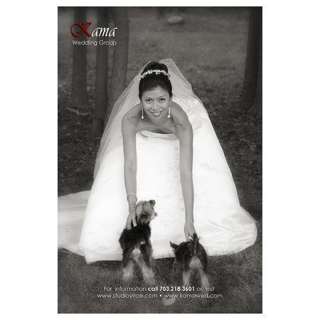 Charlie Shin Photography - Vienna VA Wedding Photographer Photo 7