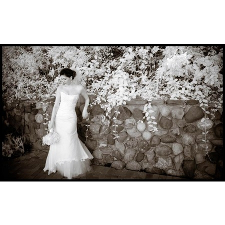 Scott A. Nelson Photographers - Newport Beach CA Wedding Photographer Photo 4