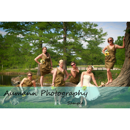 Aumann Photography - Saint Louis MO Wedding Photographer Photo 11