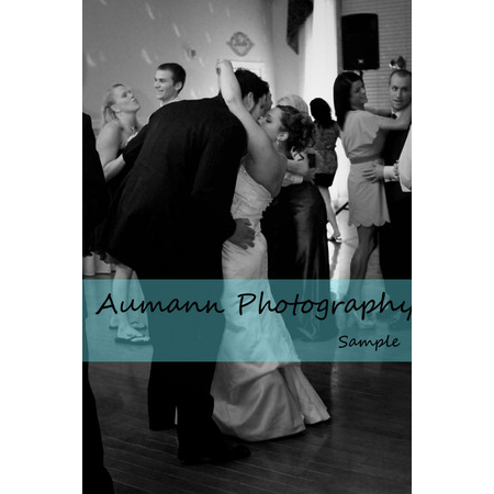 Aumann Photography - Saint Louis MO Wedding Photographer Photo 8