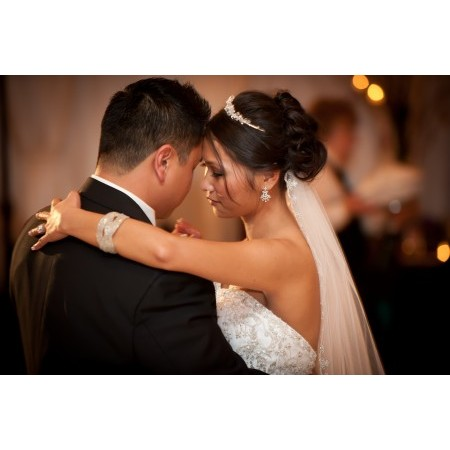 Andy Schneider Photography - Schaumburg IL Wedding Photographer Photo 9