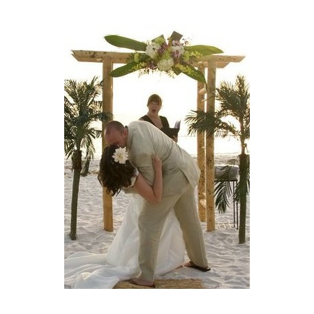 A Florida Wedding Ceremony - Palm Harbor FL Wedding Officiant / Clergy Photo 5