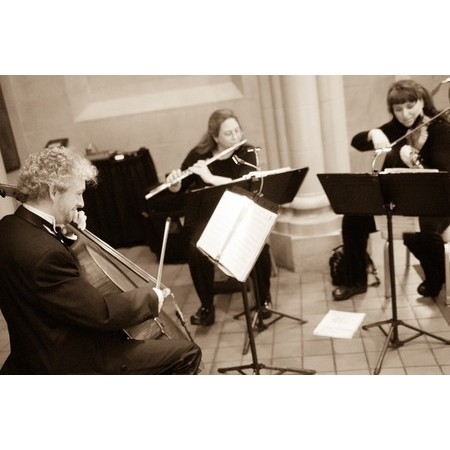 Antares Musicians - Ellicott City MD Wedding Ceremony Musician Photo 2