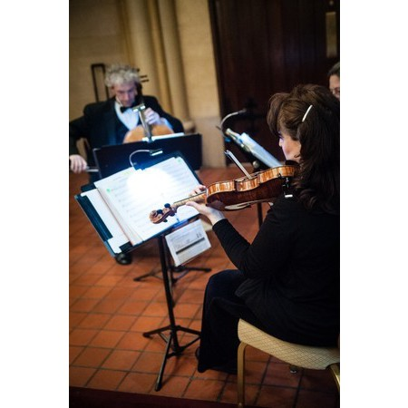 Antares Musicians - Ellicott City MD Wedding Ceremony Musician Photo 3