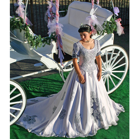 Angeli Carriages - Austin TX Wedding Transportation Photo 10