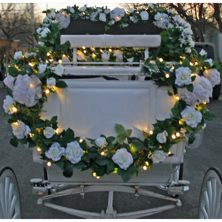 Angeli Carriages - Austin TX Wedding Transportation Photo 11