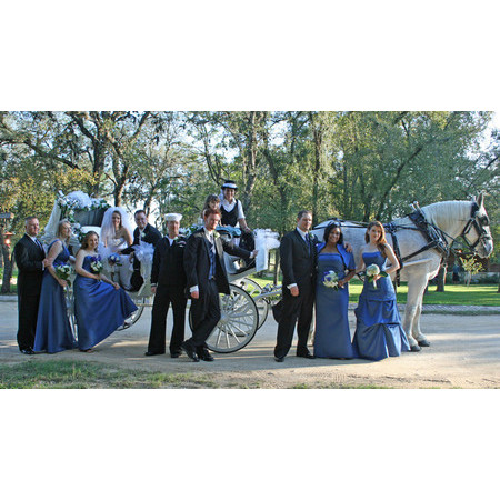 Angeli Carriages - Austin TX Wedding Transportation Photo 14