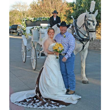 Angeli Carriages - Austin TX Wedding Transportation Photo 4