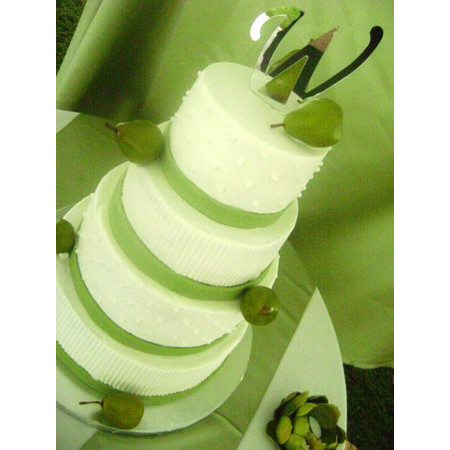 Delectable Delights By Debbie - Amherst OH Wedding Cake Photo 19