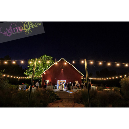 An Essential Event - Denver CO Wedding Officiant / Clergy Photo 6