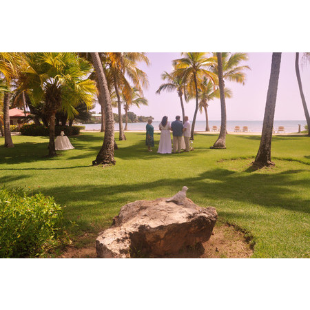 AMR Weddings & Events  Coordination - Ponce PR Wedding Planner / Coordinator Photo 25