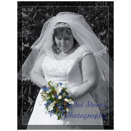 Digital Stories Photography - Milwaukee WI Wedding Photographer Photo 17