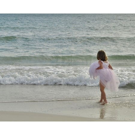 Abby Affordable Florida Weddings - Clearwater FL Wedding Planner / Coordinator Photo 19