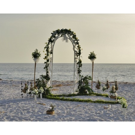 Abby Affordable Florida Weddings - Clearwater FL Wedding Planner / Coordinator Photo 4