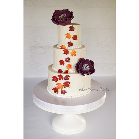 Steel Penny Cakes - Mount Pleasant PA Wedding Cake Photo 10