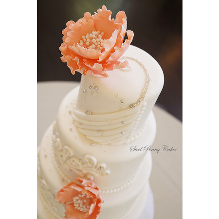 Steel Penny Cakes - Mount Pleasant PA Wedding Cake Photo 6