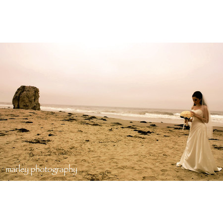 Sea-Green Photography ~ by amber marley - Ben Lomond CA Wedding Photographer Photo 17