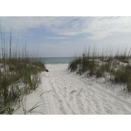 Weddings by Reese - Officiant & Beach Weddings - Gulf Breeze FL Wedding Officiant / Clergy Photo 14