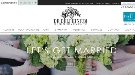 Dr Delphinium Designs & Events