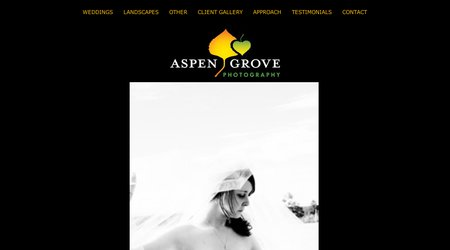 Aspen Grove Photography