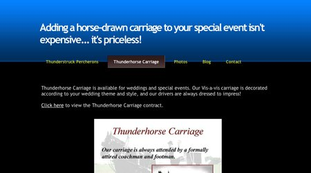 Thunderhorse Carriage