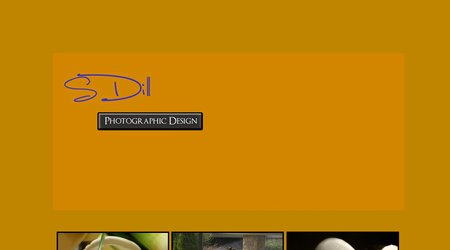 Steve Dill Photographic Design
