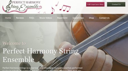 Perfect Harmony Strings