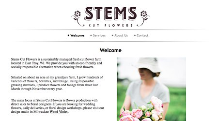 Stems Cut Flowers