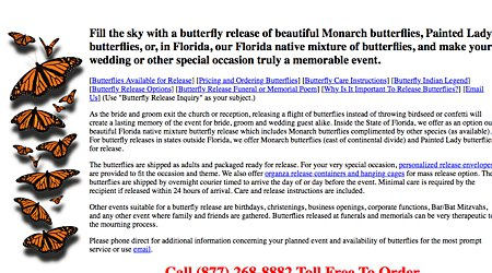 Florida Monarch Butterfly Farm