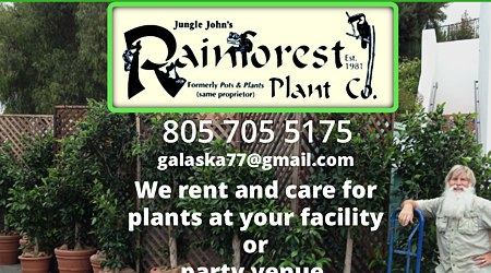 Rainforest Plant Company