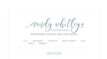 Mandy Whitley Photography