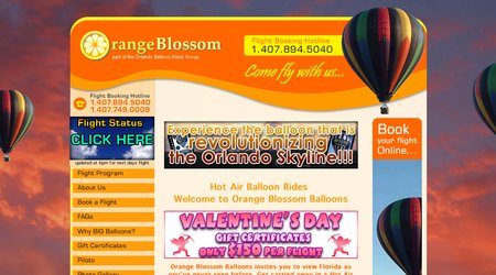 Orange Blossom Balloons