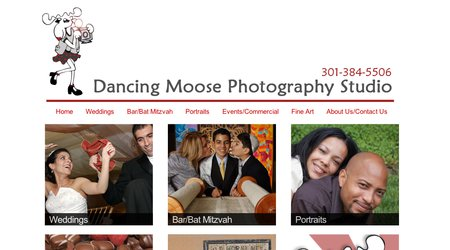 Dancing Moose Photography