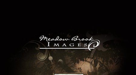 Meadow Brook Images